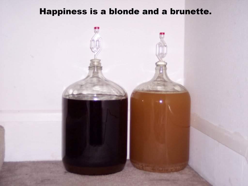 BlondeandBrunette.jpg