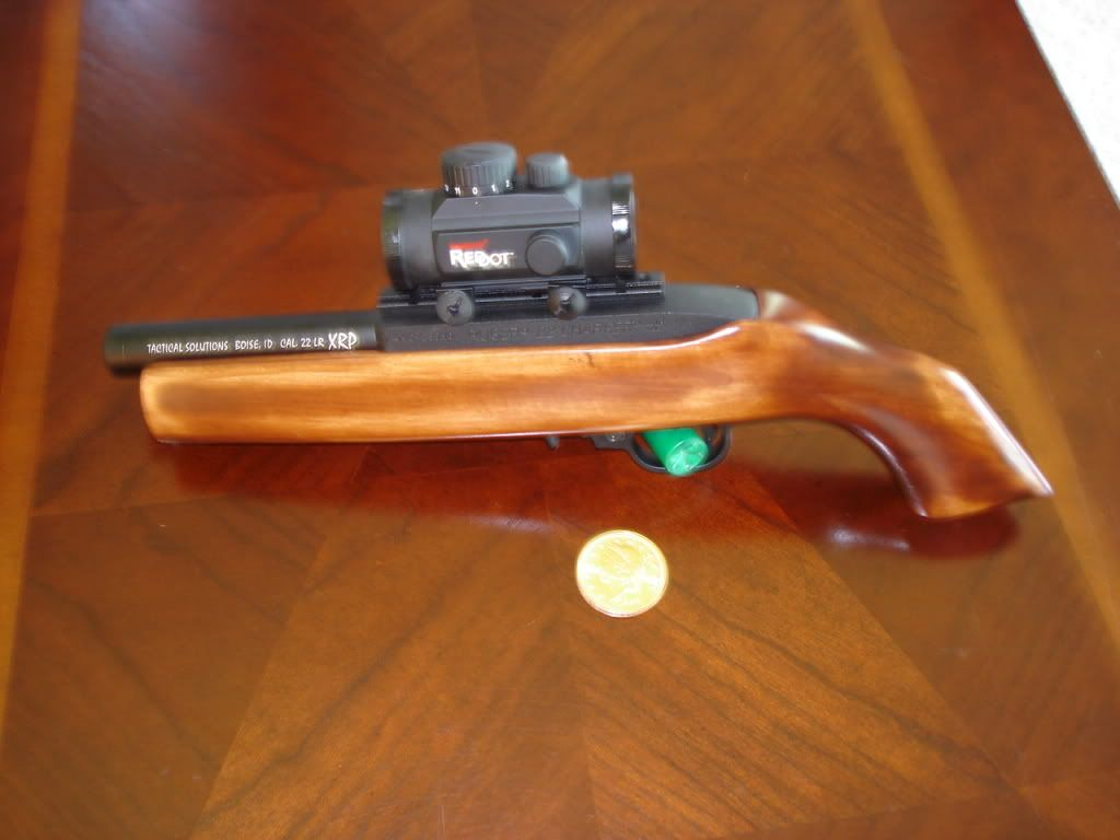 Ruger Charger TacSol 5 5