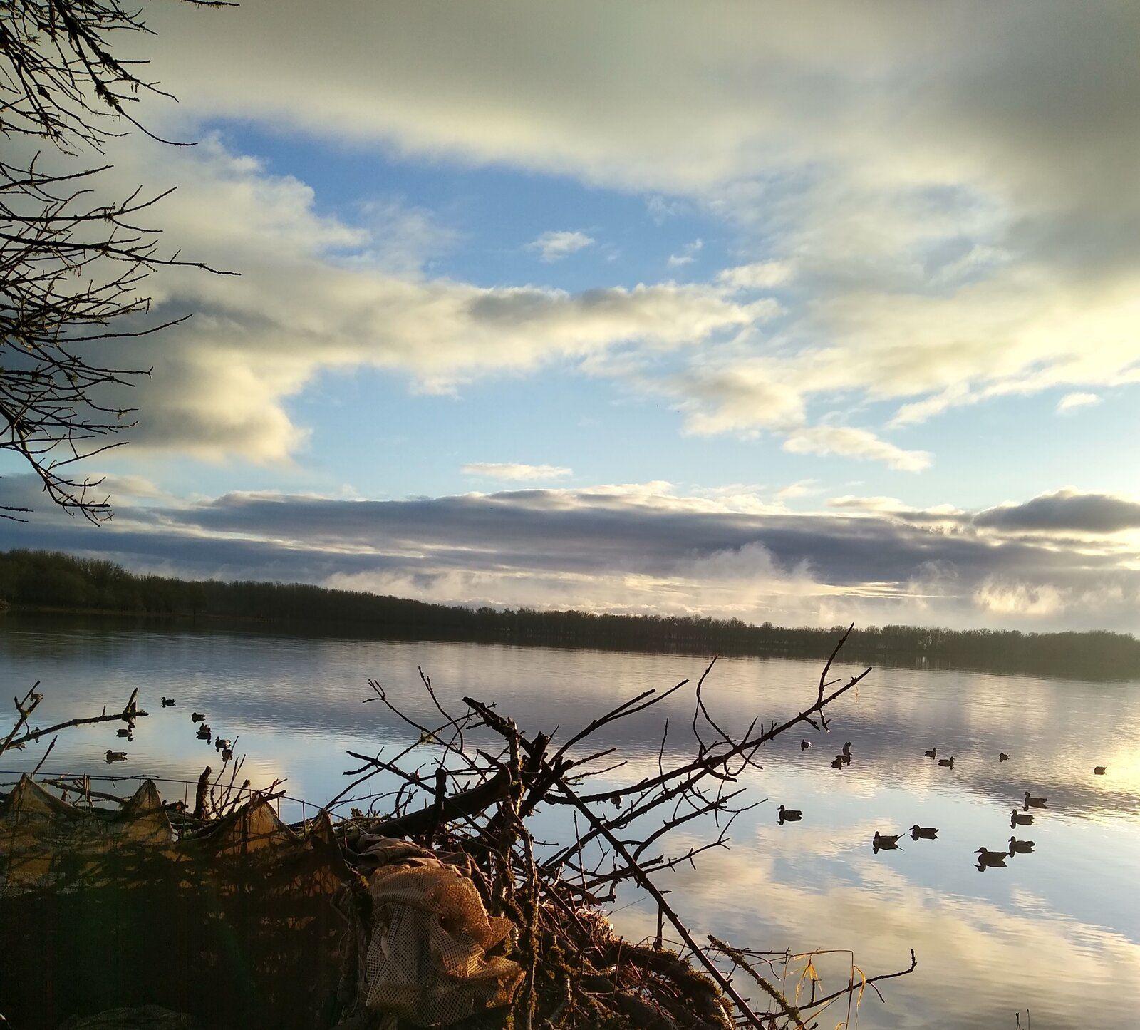 Duck Blind 11-19-19.jpg