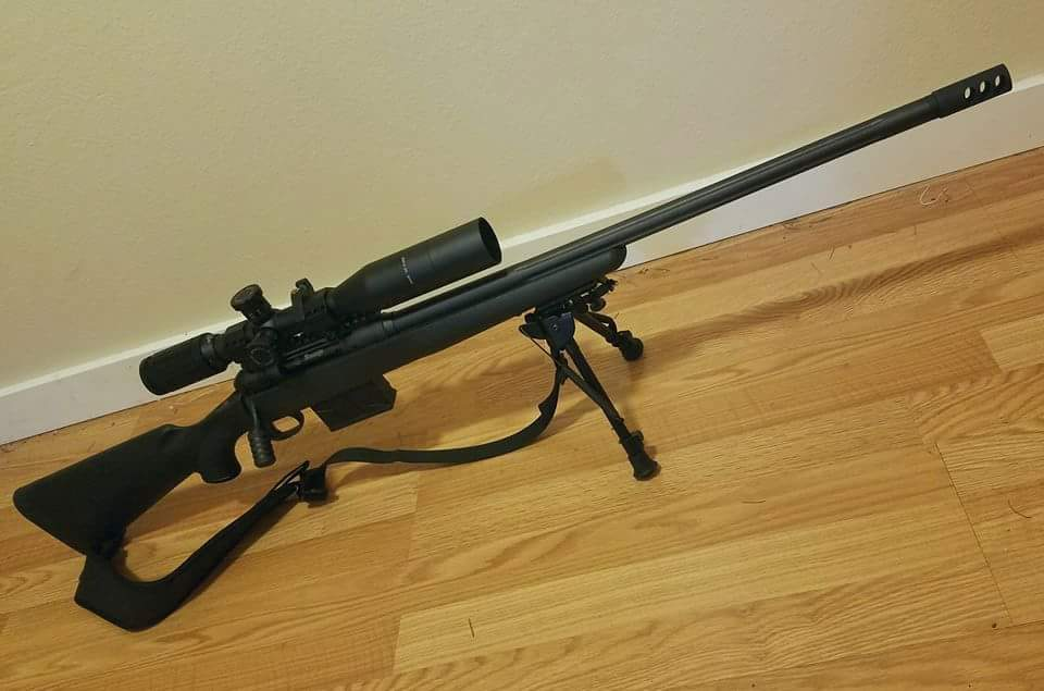 Want long range bolt action rifle - thoughts or